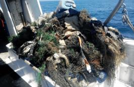 basurasAEBAM - Marine Waste