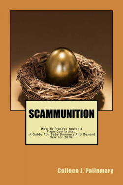 New Scam cover
