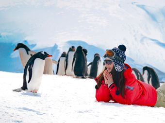 Inquisitive girl with penguin