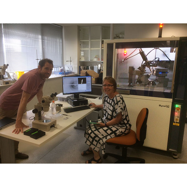 Prof. Alive Vrielink with the new ROD Synergy-S protein crystallography system.