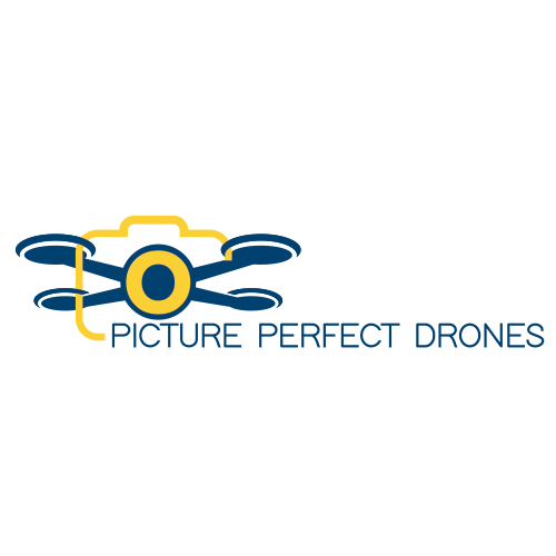Picture Perfect Drones