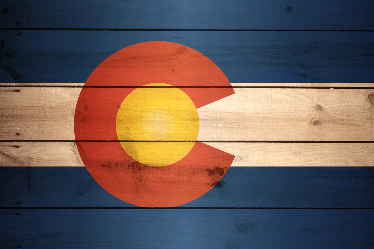 Colorado's Occupational Therapists
