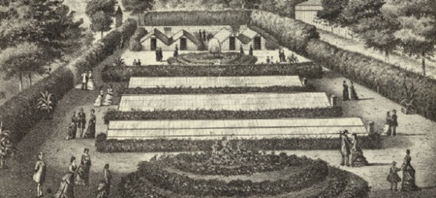 Explore Early Greenhouse Art and Design