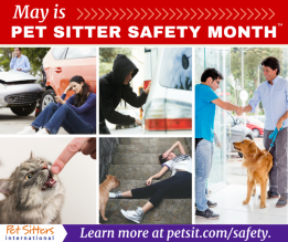 May marks the 2nd annual Pet Sitter Safety Month.