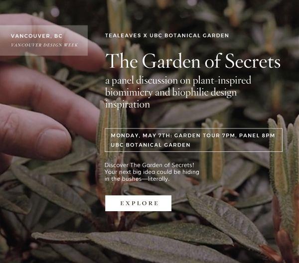TEALEAVES-x-UBC-Botanical-Garden--Garden-of-Secret