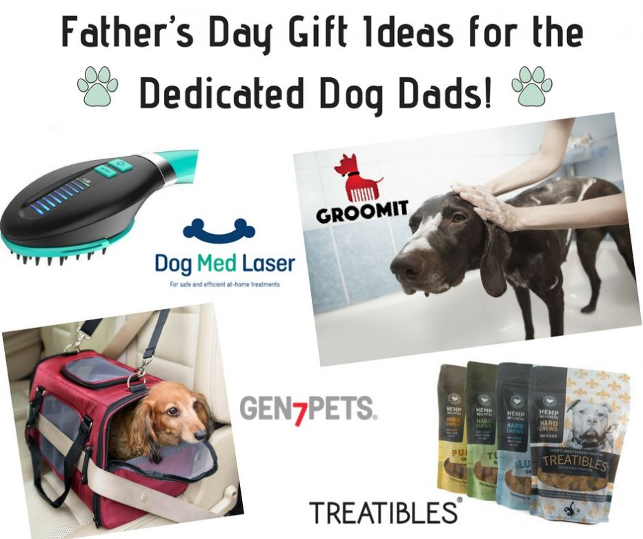 Father's Day Gift Ideas for the Dedicated Dog Da