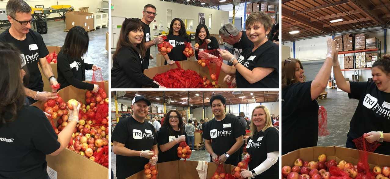 TRI Pointe Homes Northern CA Helps Alameda County Community Food Bank.