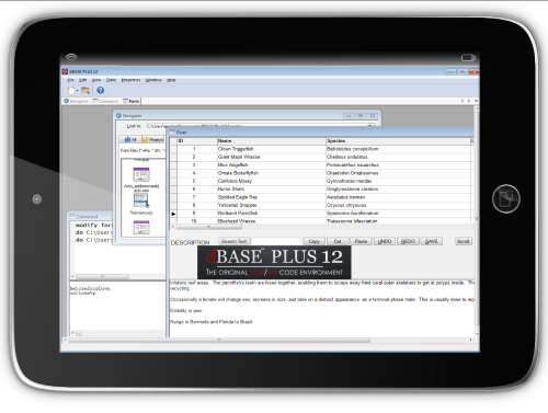 Congratulations are in order, the NEW dBASE™ PLUS 12 has been