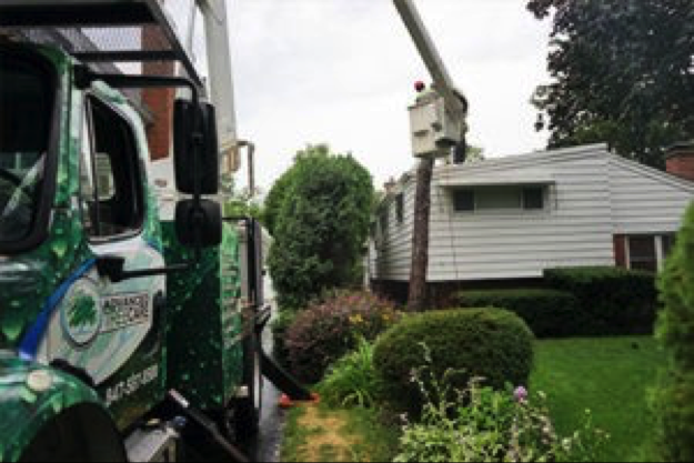 Tree removal can be tricky. Let the professionals handle this challenging work.