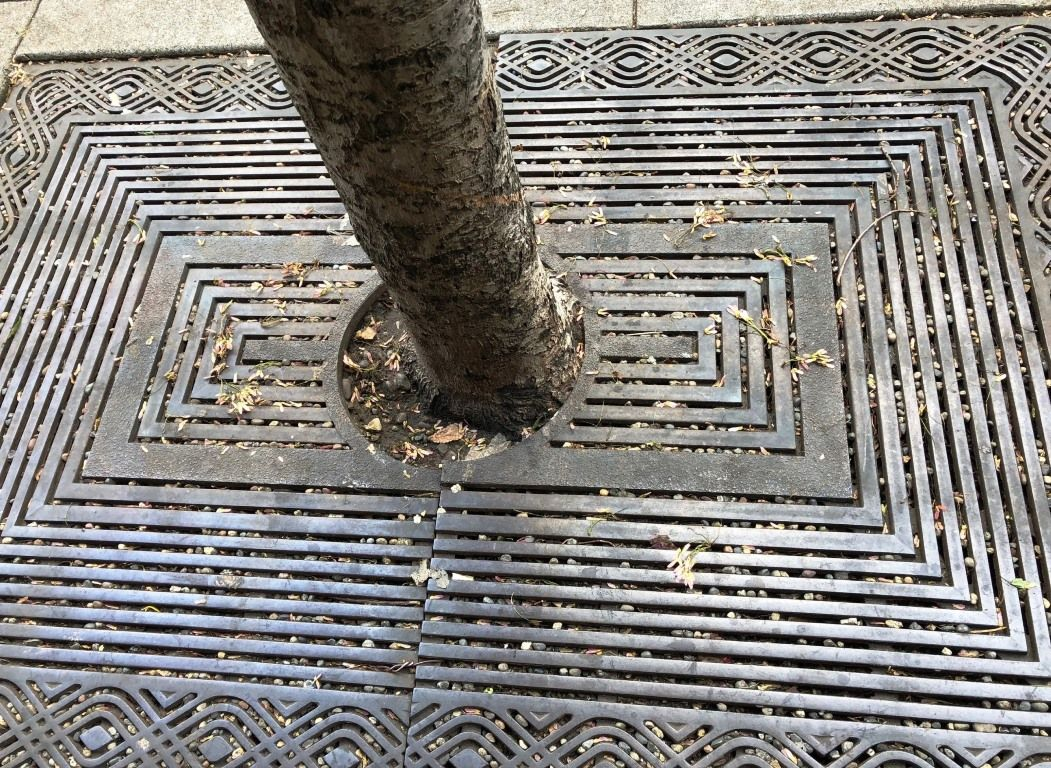 Old metal tree grate: tripping hazard, difficult and costly to keep clean
