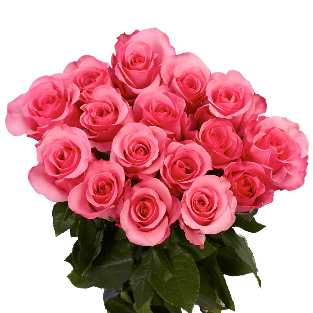 Nucci Florists - Bouquet of Roses