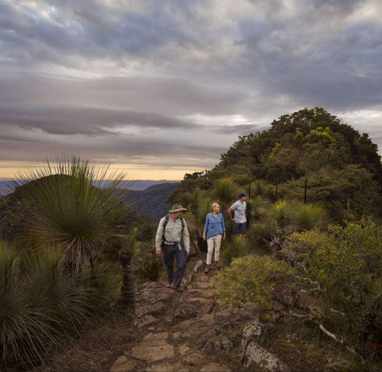 Spicers Peak trail