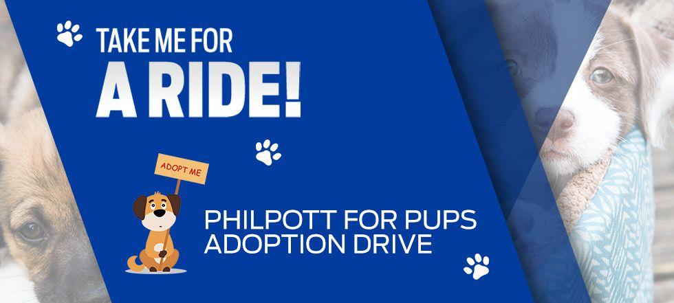 Philpott For Pups Adoption Drive