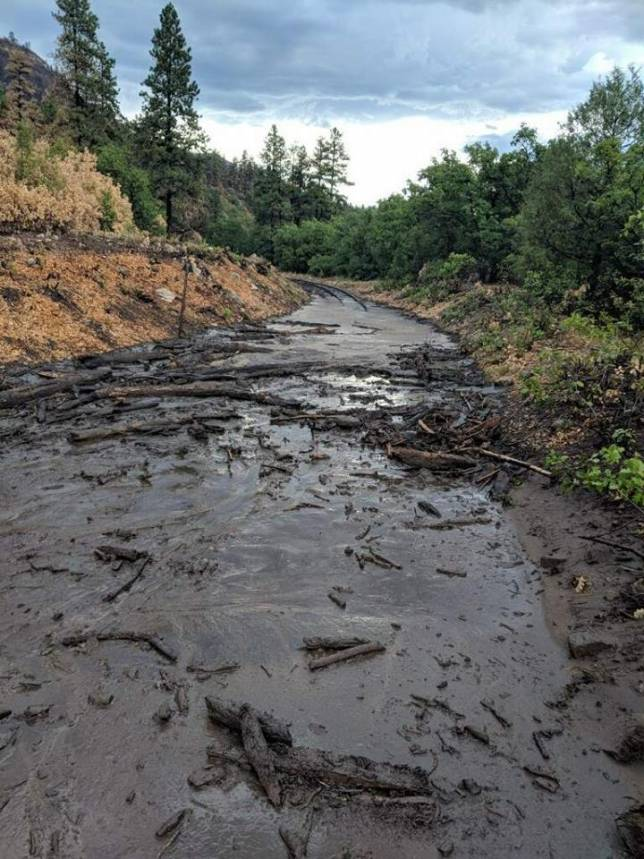 Recent mudslides have inundated portions of the D&SNGRR line.
