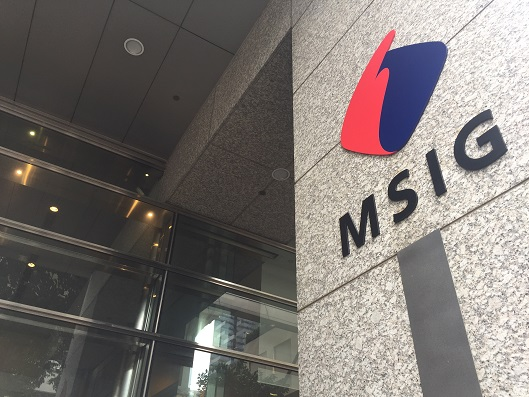 MSIG Holdings (Asia)