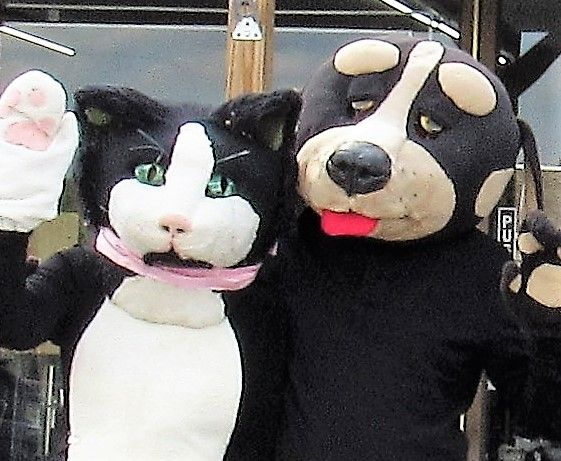 kitty and Smokey urge everyone to attend Oct 27 event Dining for Cats and Dogs