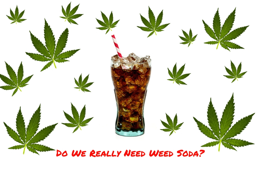 Scott Cooper Miami Asks Do We Really Need Weed Soda?