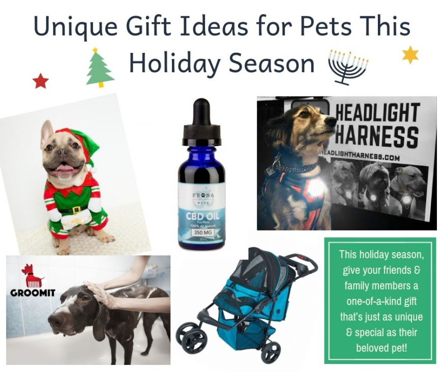 Unique Gift Ideas for Pets This Holiday Season