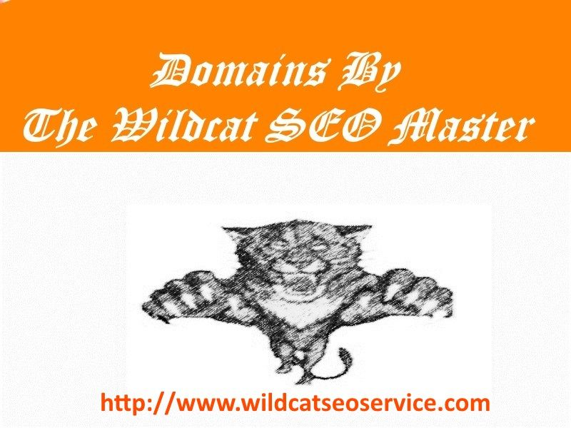 Domains by The Wildcat SEO Master