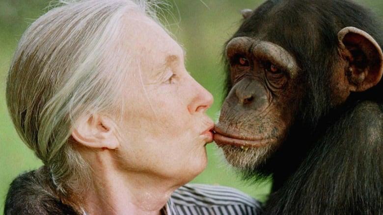 Dr. Jane Goodall is on Animal Radio