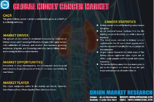 Kidney Cancer Market