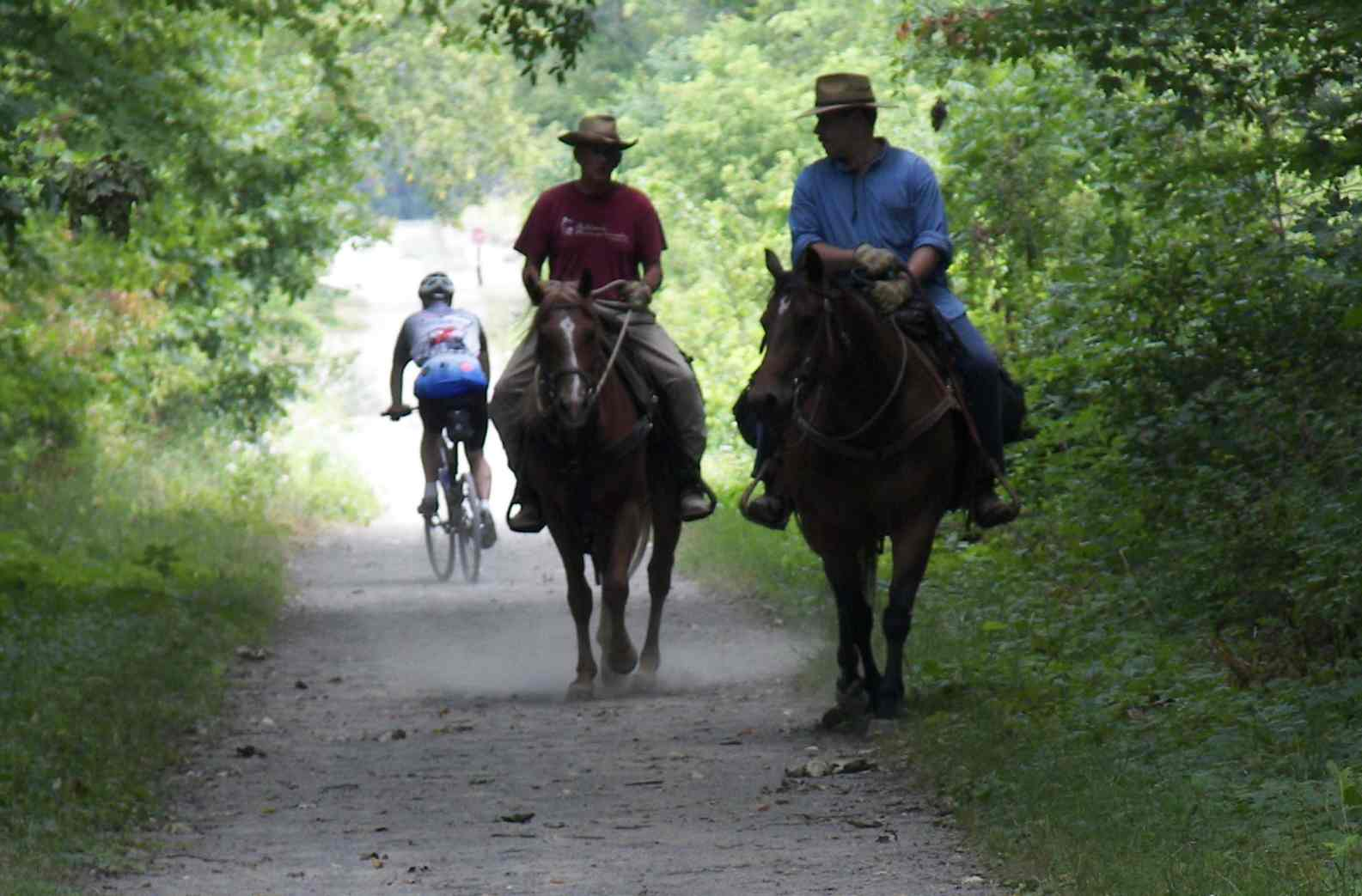 Trail enthusiasts enjoy the Mike Levine Lakelands Trail State Park