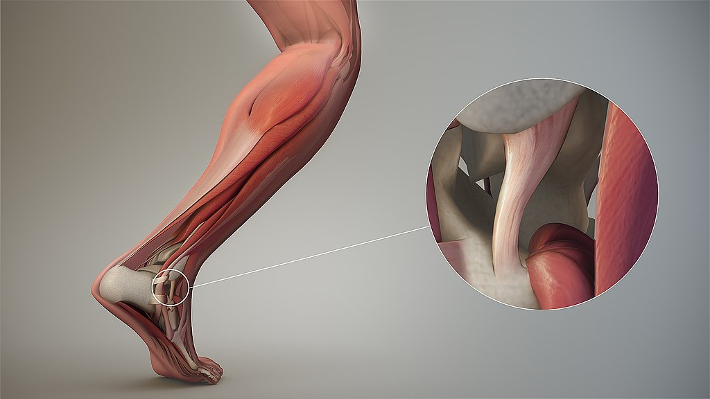 Global-Soft-Tissue-Repair-Market