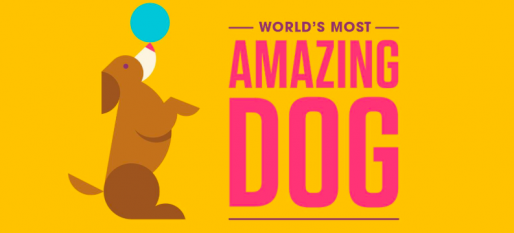 Most Amazing Dog Audition on Facebook Watch