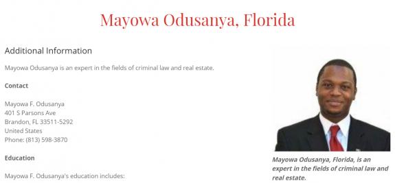 Professional Profile of Mayowa Odusanya, Florida