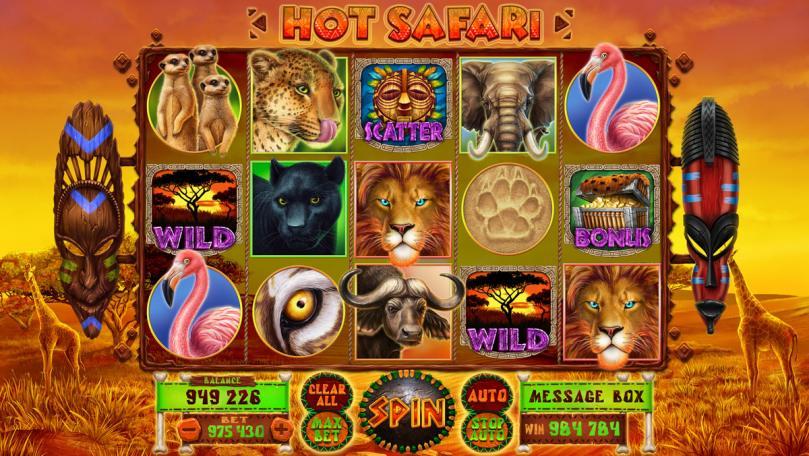 "Game design for the online slot machine ""Hot Safari"""