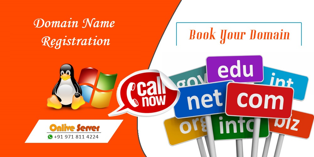Domian Name Registration Service Onlive Server