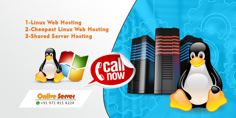 A Cheapest VPS Hosting Company Onlive Server Launched Domain