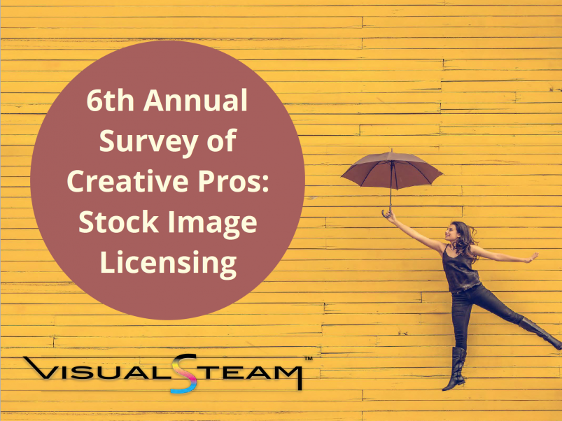 Anuual survey 2019 cover