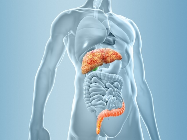MICROB-PREDICT identifies microbiome-based biomarkers to fight liver cirrhosis