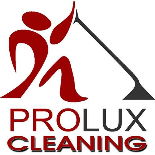 prolux_cleaning_500x500