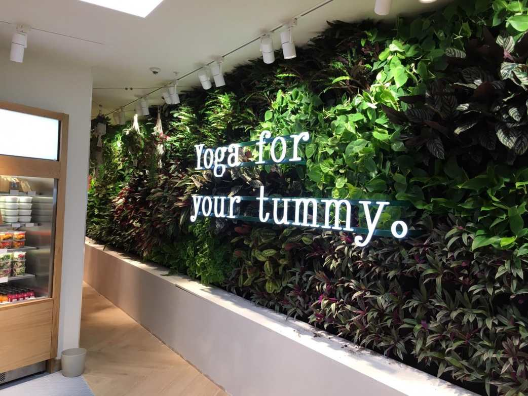 H and M Westfield Living Walls