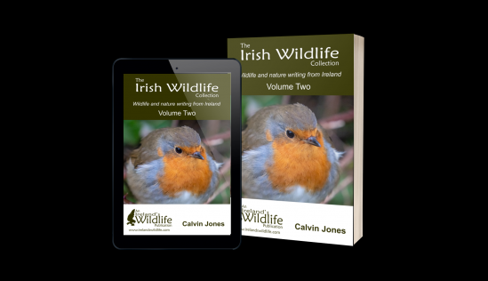 The Irish Wildlife Collection Volume Two -- available now on Amazon
