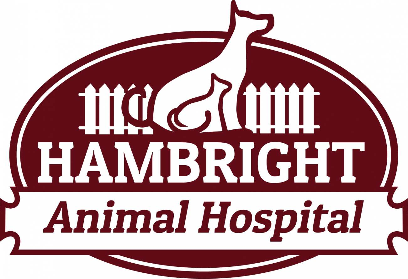 Hambright Animal Hospital
