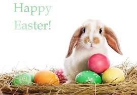 Happy Easter From Altrice Investment Co. Limited
