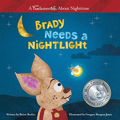 """Brady Needs A Nightlight"" by Author Brian Barlics"