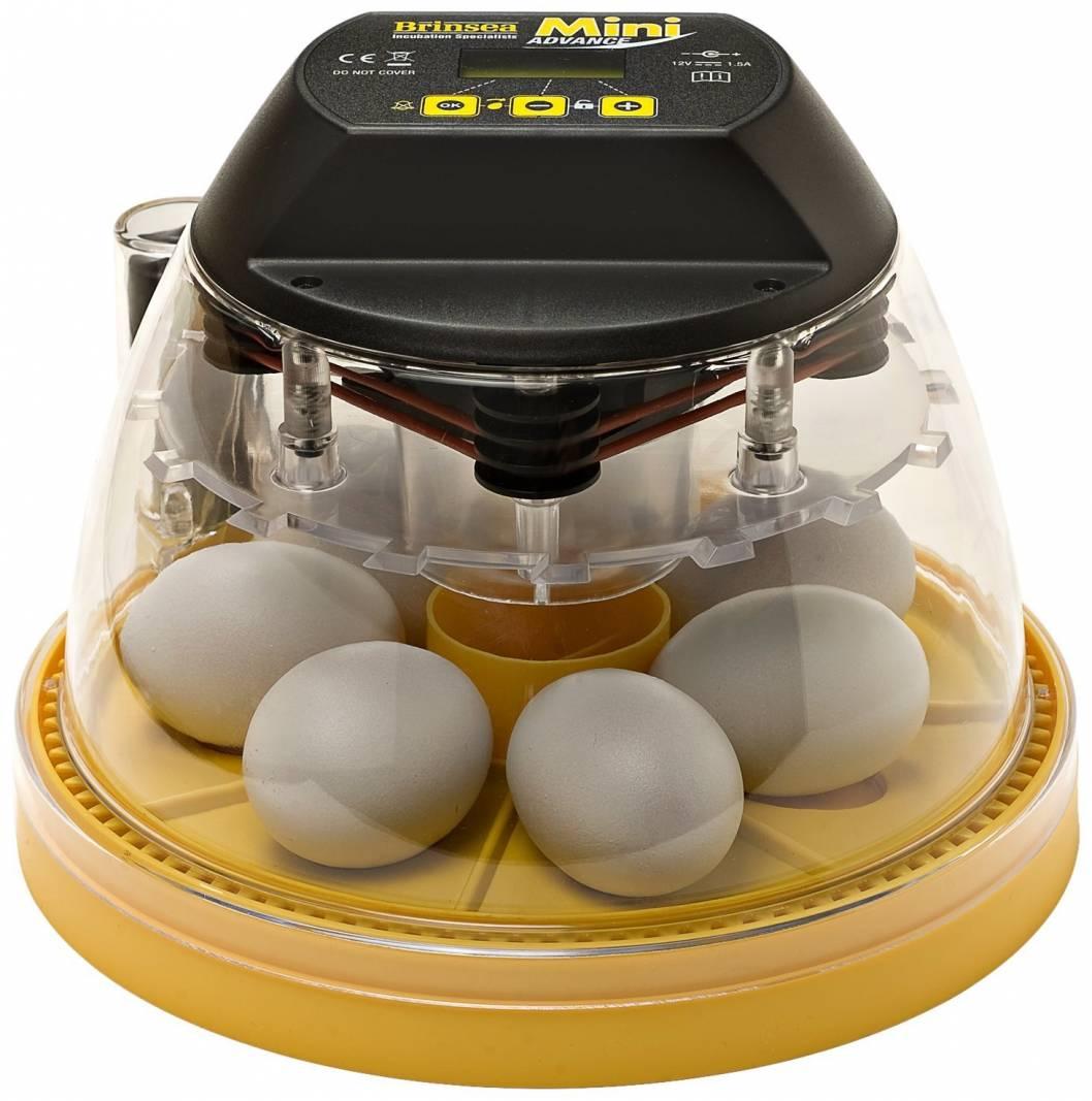 Brinsea Egg Incubator by Little Fields Farm