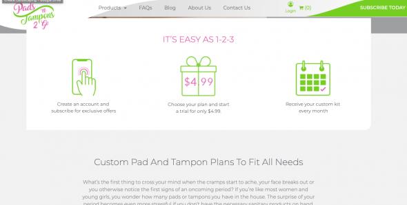 Pads N Tampons 2 Go Website