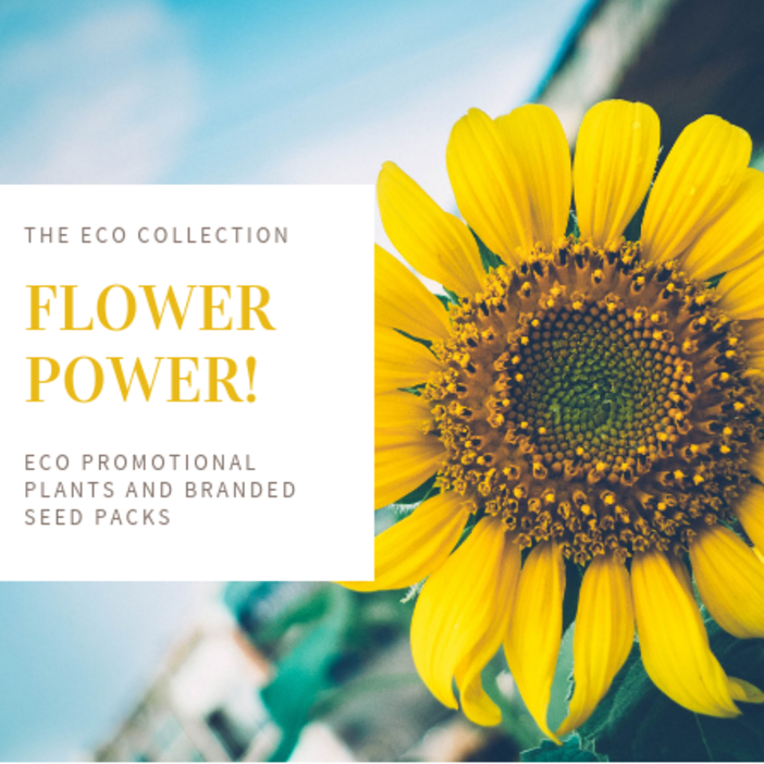 eco-promotional-plants-and-seed-packs