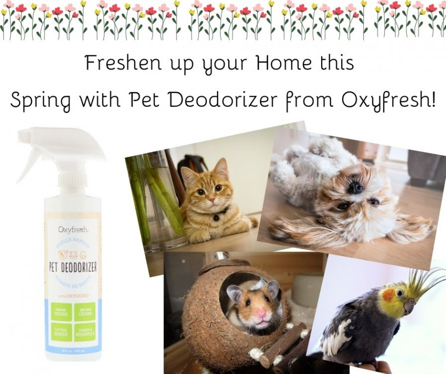 Freshen up your Home this Spring with Pet Deodoriz
