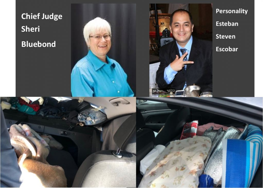Chief Judge Sheri Bluebond Makes A Huge Mistake By