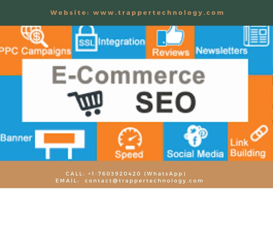www.trappertechnology.com-Affordable Ecommerce SEO