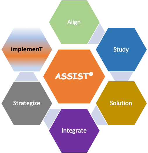ASSIST© Test consulting Process