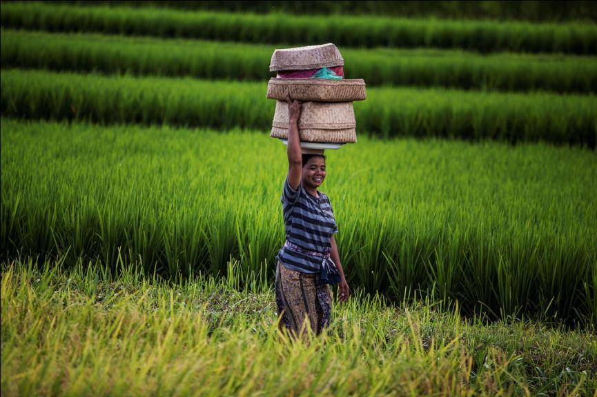 Local Bali woman