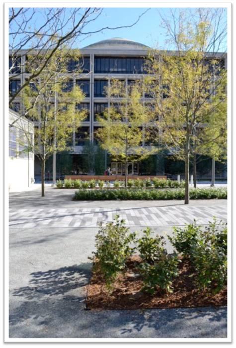 MIT's North Corridor