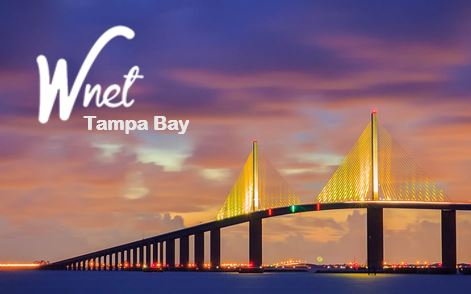 Wnet Tampa Bay Chapter